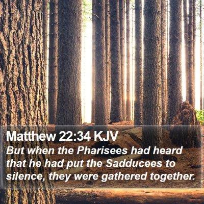 Matthew 22:34 KJV Bible Verse Image