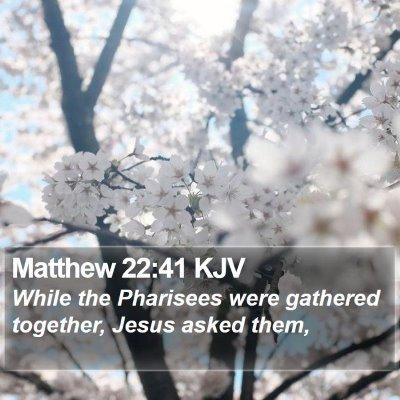 Matthew 22:41 KJV Bible Verse Image