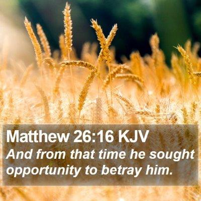 Matthew 26:16 KJV Bible Verse Image