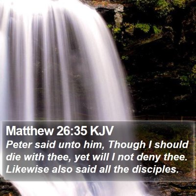 Matthew 26:35 KJV Bible Verse Image