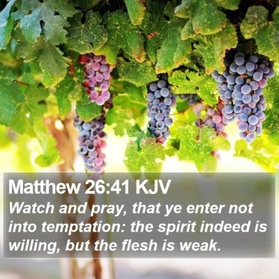 Matthew 26:41 KJV Bible Verse Image