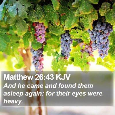 Matthew 26:43 KJV Bible Verse Image