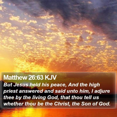 Matthew 26:63 KJV Bible Verse Image