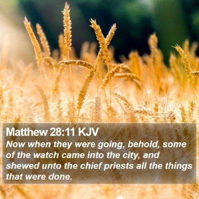 Matthew 28:11 KJV Bible Verse Image