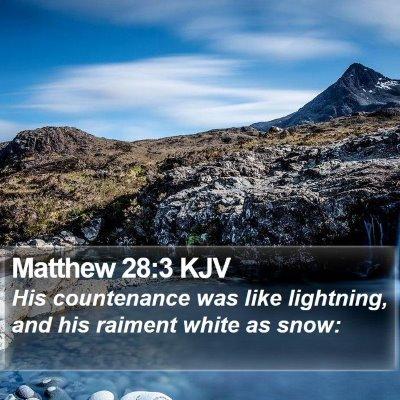 Matthew 28:3 KJV Bible Verse Image