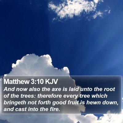Matthew 3:10 KJV Bible Verse Image