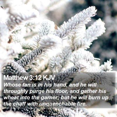 Matthew 3:12 KJV Bible Verse Image