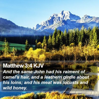 Matthew 3:4 KJV Bible Verse Image
