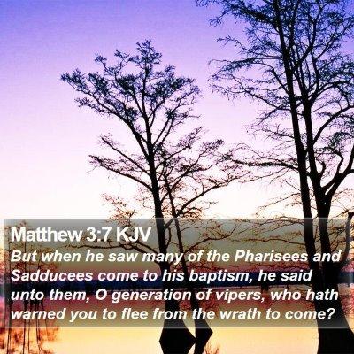 Matthew 3:7 KJV Bible Verse Image