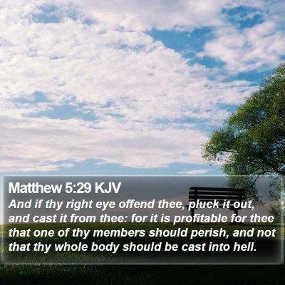 Matthew 5:29 KJV Bible Verse Image