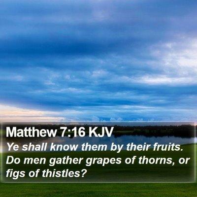 Matthew 7:16 KJV Bible Verse Image