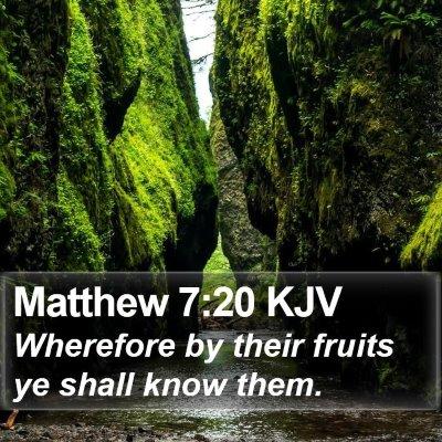 Matthew 7:20 KJV Bible Verse Image