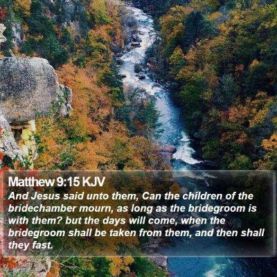 Matthew 9:15 KJV Bible Verse Image