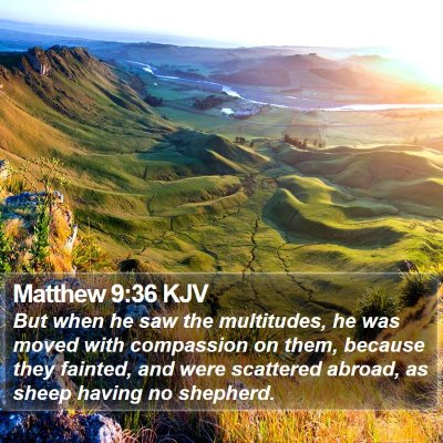 Matthew 9:36 KJV Bible Verse Image