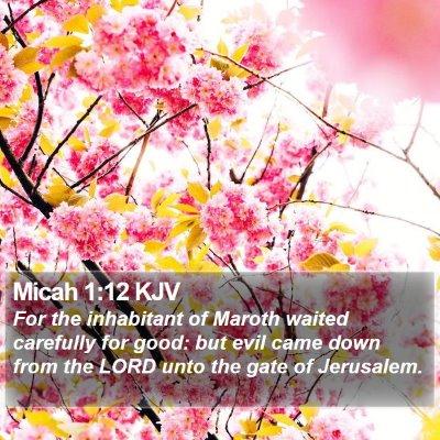 Micah 1:12 KJV Bible Verse Image