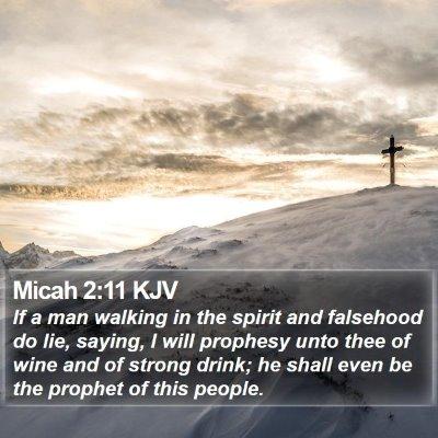 Micah 2:11 KJV Bible Verse Image