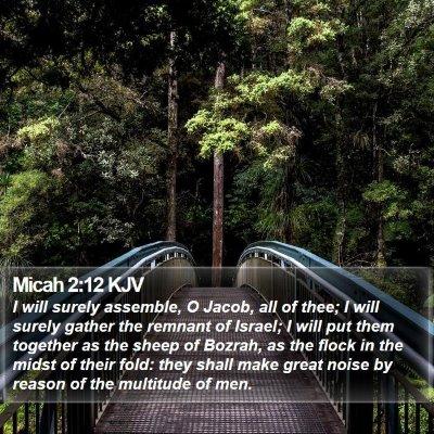 Micah 2:12 KJV Bible Verse Image