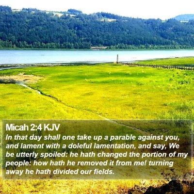 Micah 2:4 KJV Bible Verse Image