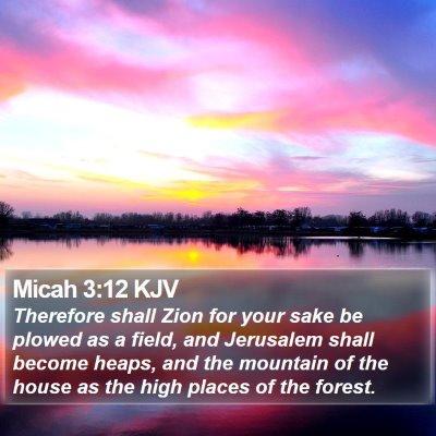Micah 3:12 KJV Bible Verse Image