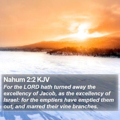 Nahum 2:2 KJV Bible Verse Image