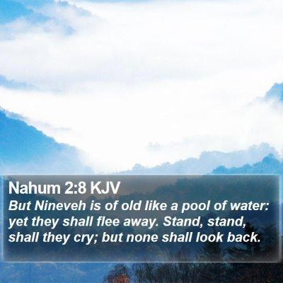 Nahum 2:8 KJV Bible Verse Image