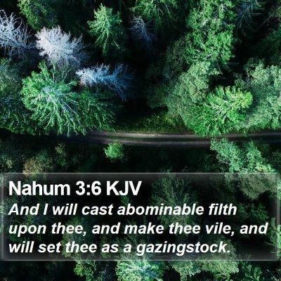 Nahum 3:6 KJV Bible Verse Image