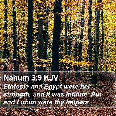 Nahum 3:9 KJV Bible Verse Image