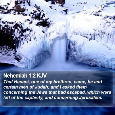 Nehemiah 1:2 KJV Bible Verse Image