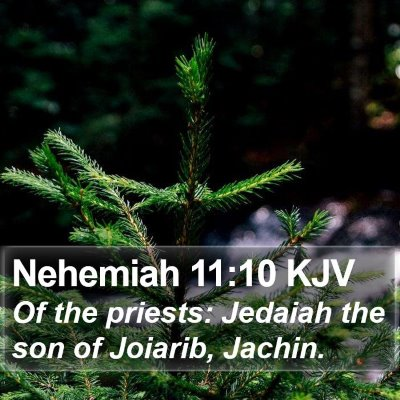 Nehemiah 11:10 KJV Bible Verse Image