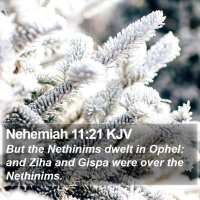 Nehemiah 11:21 KJV Bible Verse Image