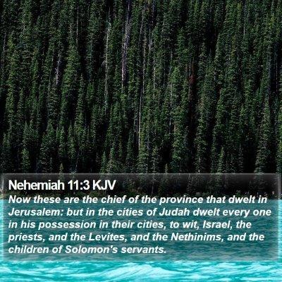 Nehemiah 11:3 KJV Bible Verse Image