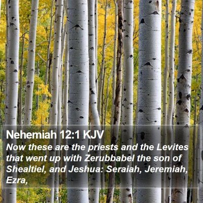Nehemiah 12:1 KJV Bible Verse Image
