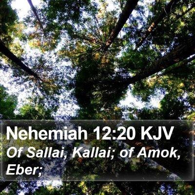 Nehemiah 12:20 KJV Bible Verse Image