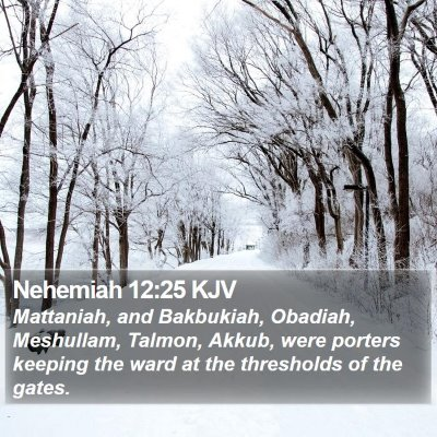 Nehemiah 12:25 KJV Bible Verse Image