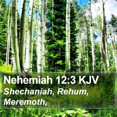 Nehemiah 12:3 KJV Bible Verse Image