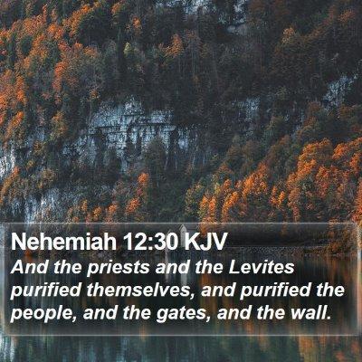 Nehemiah 12:30 KJV Bible Verse Image