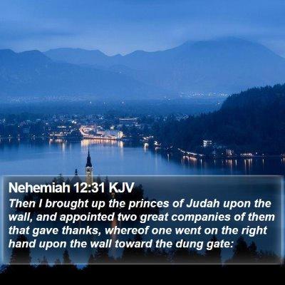 Nehemiah 12:31 KJV Bible Verse Image
