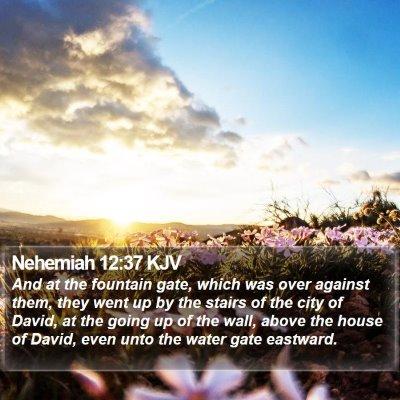 Nehemiah 12:37 KJV Bible Verse Image