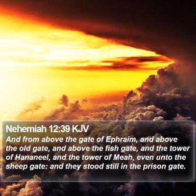 Nehemiah 12:39 KJV Bible Verse Image