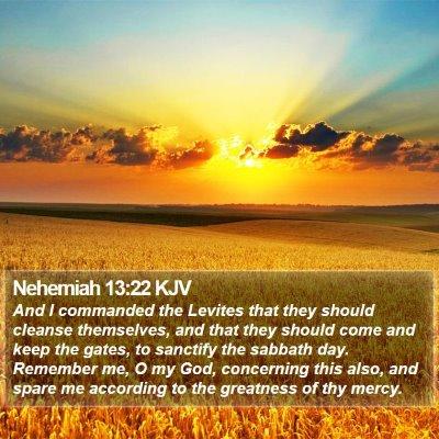 Nehemiah 13:22 KJV Bible Verse Image