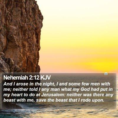 Nehemiah 2:12 KJV Bible Verse Image
