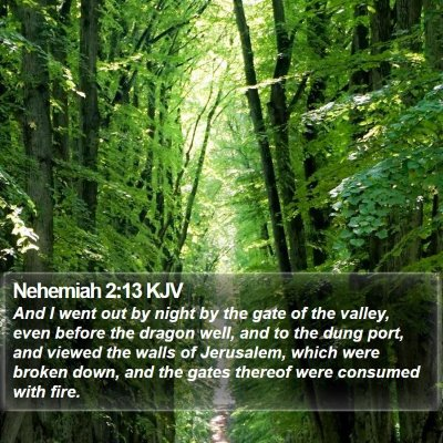 Nehemiah 2:13 KJV Bible Verse Image