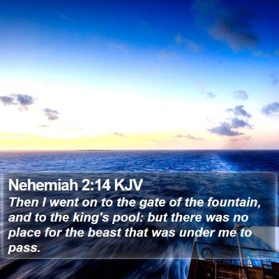 Nehemiah 2:14 KJV Bible Verse Image