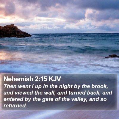 Nehemiah 2:15 KJV Bible Verse Image