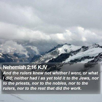 Nehemiah 2:16 KJV Bible Verse Image