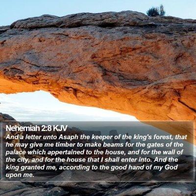 Nehemiah 2:8 KJV Bible Verse Image