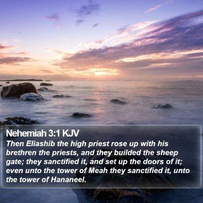 Nehemiah 3:1 KJV Bible Verse Image