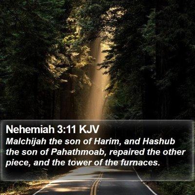 Nehemiah 3:11 KJV Bible Verse Image