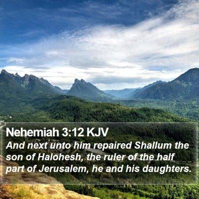 Nehemiah 3:12 KJV Bible Verse Image