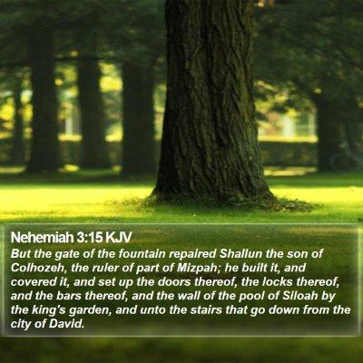 Nehemiah 3:15 KJV Bible Verse Image